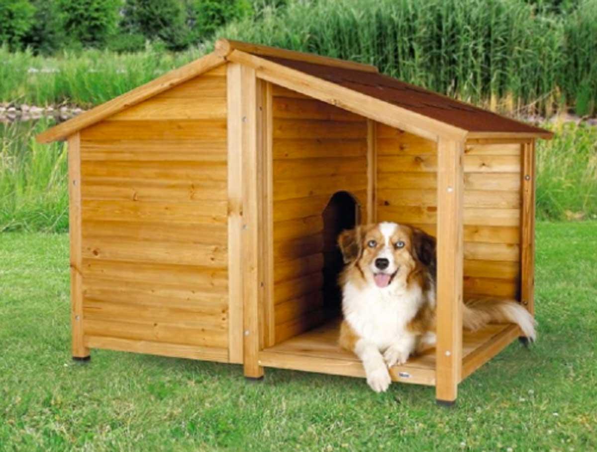 Animali Da Esterno guida alle migliori cucce per cani da esterno: materiali