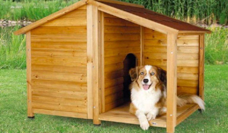 Guida alle migliori cucce per cani da esterno: Materiali ...